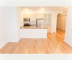 XXL One bedroom-Financial District-hardwood floors, brand new everything!