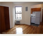 Hip & Trendy Greenwich Village  /Gorgeous recently renovated  1 bed- 1 bath/