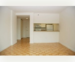 1 Bedroom / 1 Bath in Luxury Building where Midtown Meets Chelsea! Madison Square Garden and Herald Square Nearby. Available Immediately.