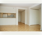 Midtown West 2 Bedroom / 2 Bath with Washer-Dryer. Located Near Madison Square Garden, Penn Station, Herald Square.